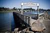 Yaquina_Bay_n_Bridge-16