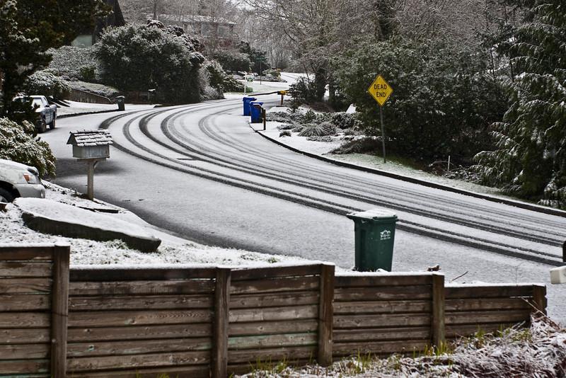 Snow in Feb (6 of 12)