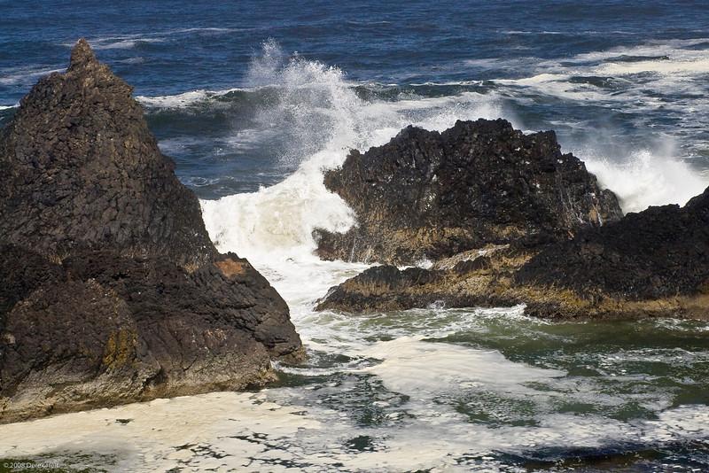 Seal_Rock_SP-16