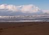 Nye Beach on Veterans' Day-2