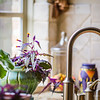 Purple passion in the kitchen, still life photography