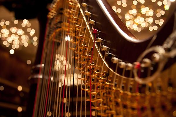 A Harp's Beauty