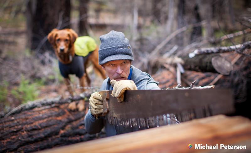 Woodsman, Saw and Dog
