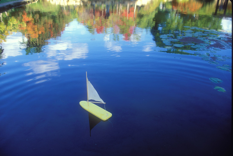 Toy sailboat on a pond