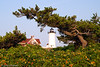 Nobska Point Light II - Woods Hole, MA, USA