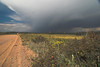 Approaching storm, Rampart Range Road. Above Woodland Park, CO.