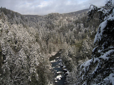Snowy Linville Gorge