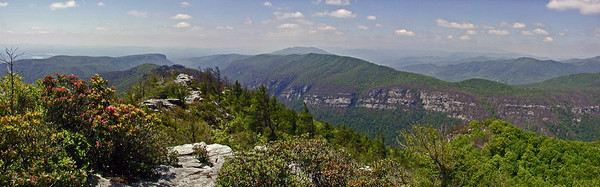 Looking down the gorge from Table Rock