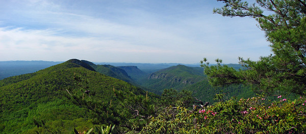 View down Linville Gorge from Sitting Bear Mt