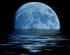 Blue Moon V 6