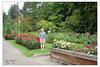 Aunt Terry Checks Out The Garden In Portland , Or .