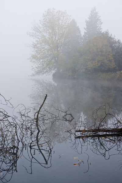 Lake Steilacoom in Fog
