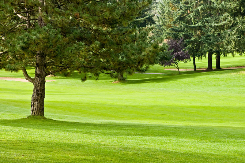 Fircrest Golf Club