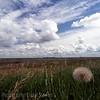 You can see a long way on the prairie... Saskatchewan Canada