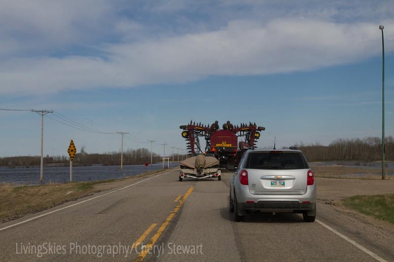 Rural traffic jam...