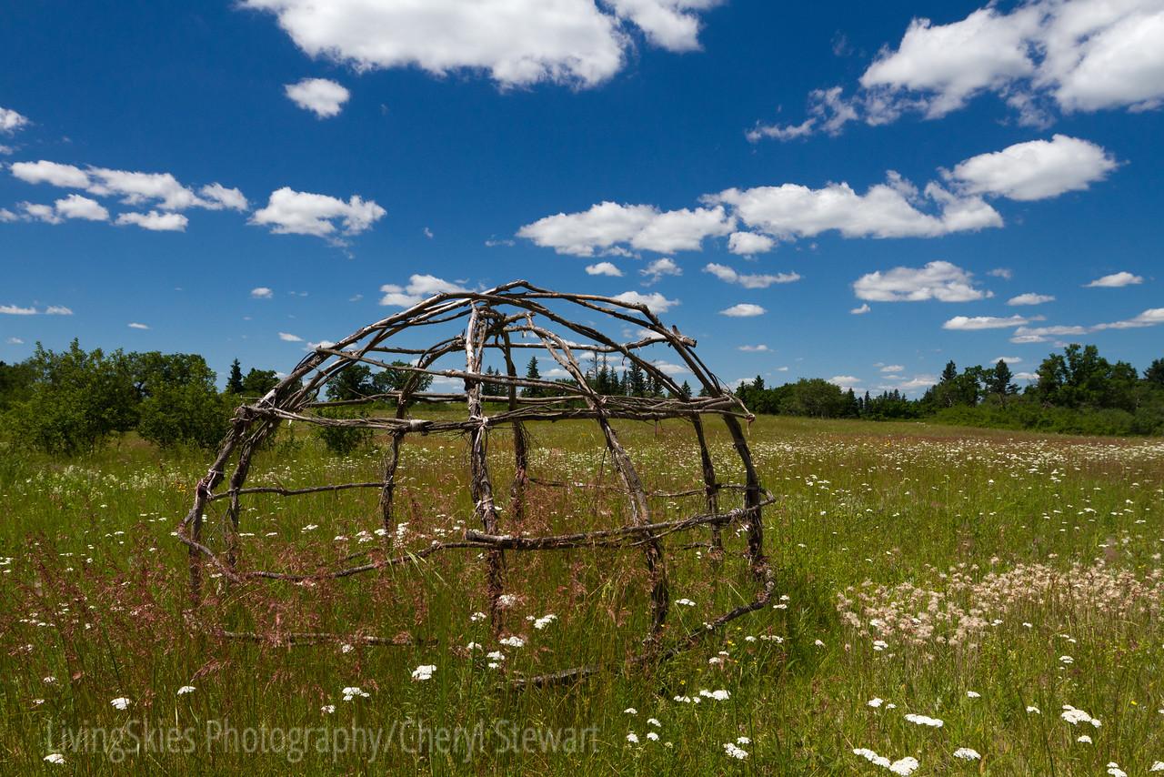 Spruce Woods Park, Manitoba