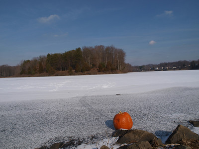 Pumpkin (Pumpkin?!) on a Frozen Royal Lake