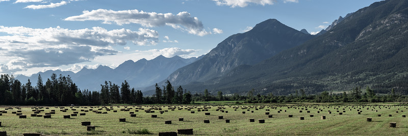 Panorama of hay field and Canadian Rockies at sunset