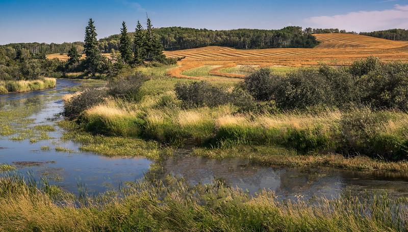 Farm Land Manitoba