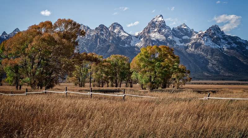 Mormon Row  Grand Teton NP