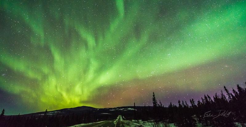 Gabe_Alaska_Aurora_Borealis_March2013-_DSC3674