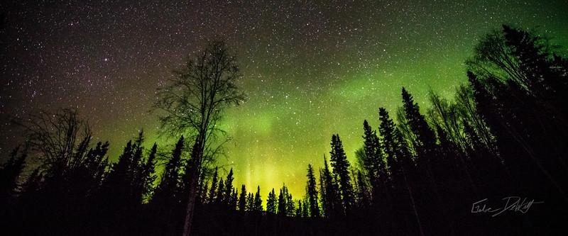 Gabe_Alaska_Aurora_Borealis_March2013-_DSC3013