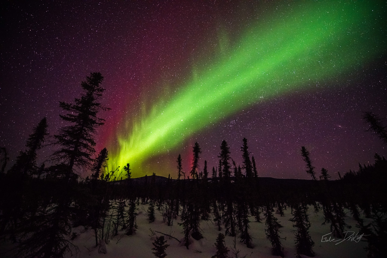 Alaska; Aurora; Favorite things; Landscape; Places; pretty; Sky; Winter; Northern Lights; March; Aurora Borealis