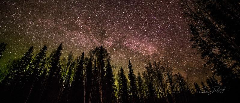 Gabe_Alaska_Aurora_Borealis_March2013-_DSC3060