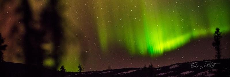 Gabe_Alaska_Aurora_Borealis_March2013-_DSC3473