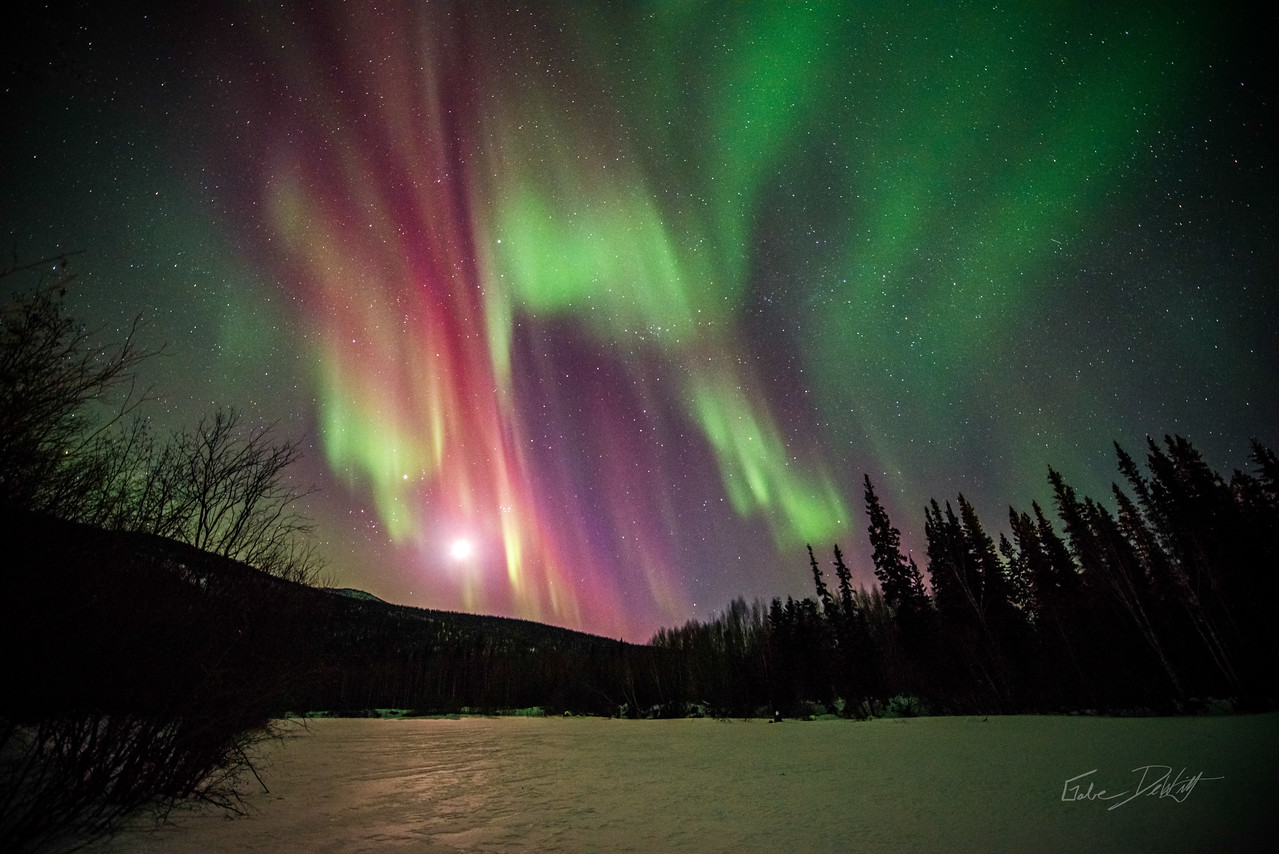 Alaska; Aurora; Landscape; pretty; Sky; Winter; Northern Lights; March; Aurora Borealis