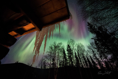 Aurora Borealis_Chena River Valley_Alaska_photos by Gabe DeWitt_March 21, 2014-642