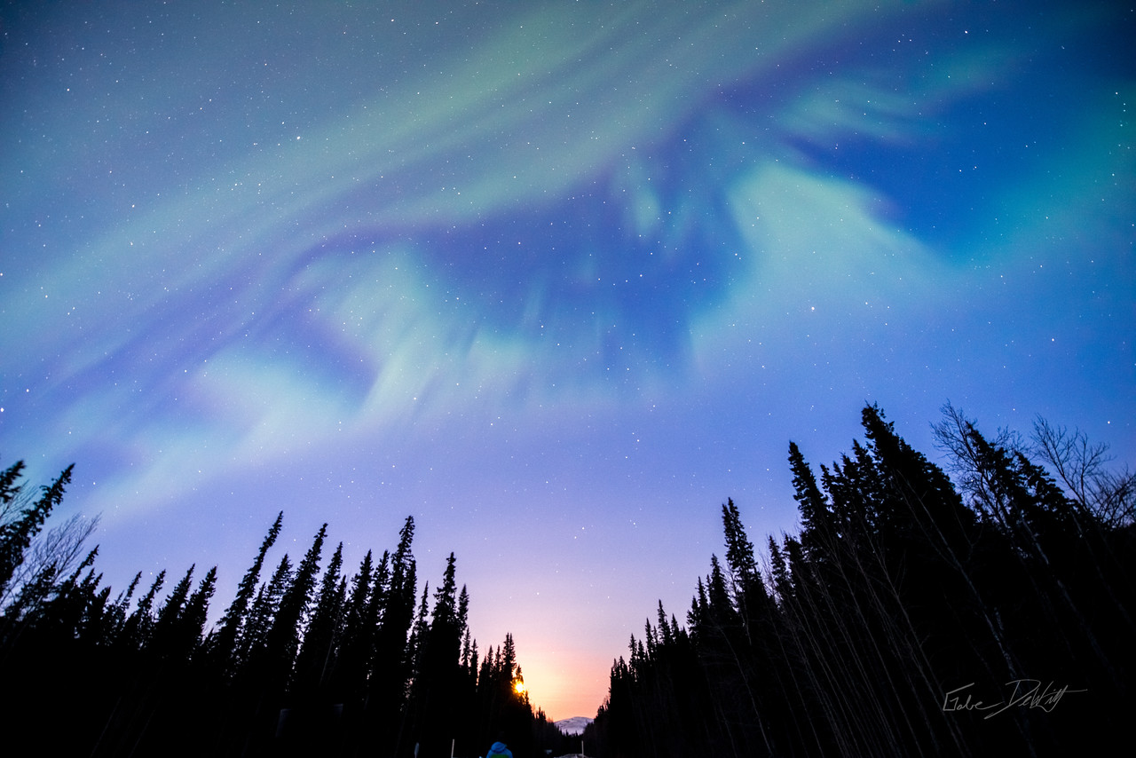2014; ART; Alaska; Alaska 2014; Aurora; Favorite things; Nikon D800; Places; Seasons; Trees; Winter; abstract; interval photos; march; photo by Gabe DeWitt; pretty; Northern Lights; Aurora Borealis; Solar Storm