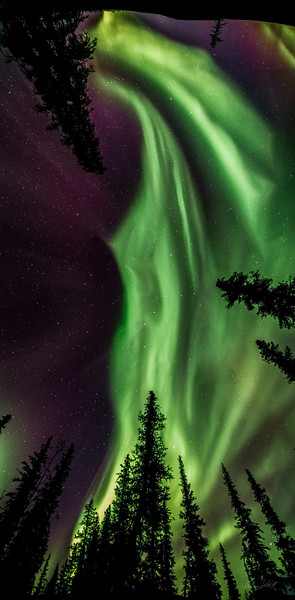 Aurora Borealis - Chena River Valley, Alaska - March 20, 2014