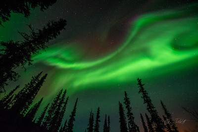 Aurora Borealis_Chena River Valley_Alaska_photos by Gabe DeWitt_March 21, 2014-217