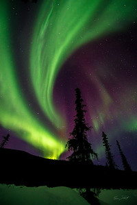 Aurora Borealis_Chena River Valley_Alaska_photos by Gabe DeWitt_March 21, 2014-492