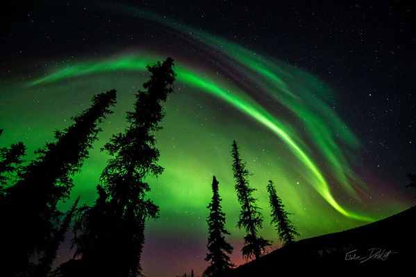 Aurora Borealis_Chena River Valley_Alaska_photos by Gabe DeWitt_March 21, 2014-462