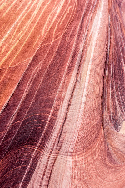 The Wave_Arizona_Utah_photos by Gabe DeWitt_November 01, 2013-6