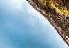 Flat Irons_Boulder_Colorado_photos by Gabe DeWittJune 27, 2014-43