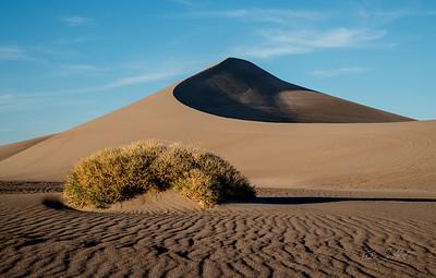Dune of Amargosa I