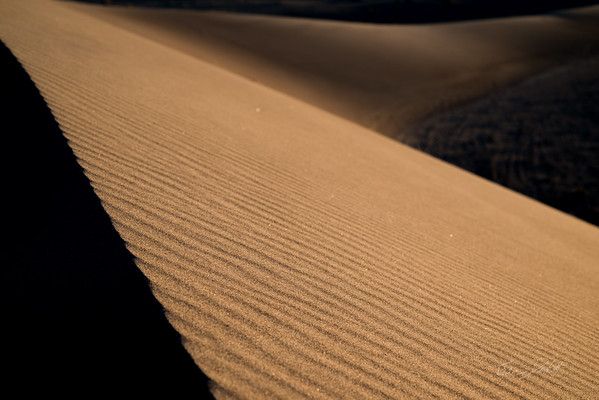 Shades of the Dune II