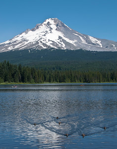 Oregon - Mount Hood