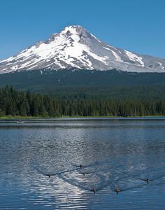 Oregon - Mount Hood