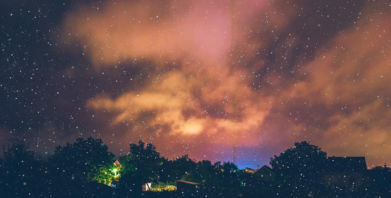 Winter Night Silhouettes