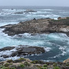 California - Point Lobos