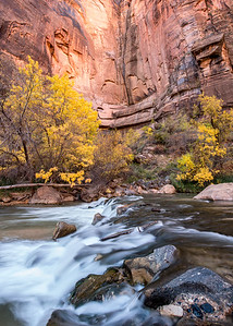 Autumn in Zion II