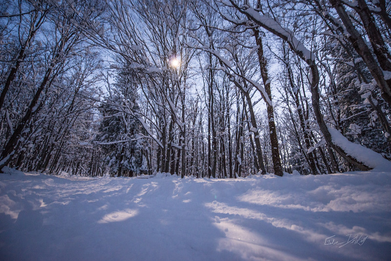 Cross Country Skiing_White Grass_Canaan Valley_West Virginia_photos by Gabe DeWitt_November 28, 2014-96