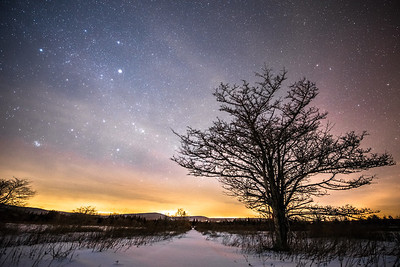 Canaan Valley National Wildlife Refuge by starlight