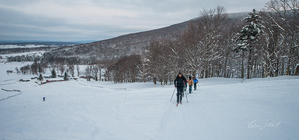 Cross Country Skiing_White Grass_Canaan Valley_West Virginia_photos by Gabe DeWitt_November 28, 2014-67
