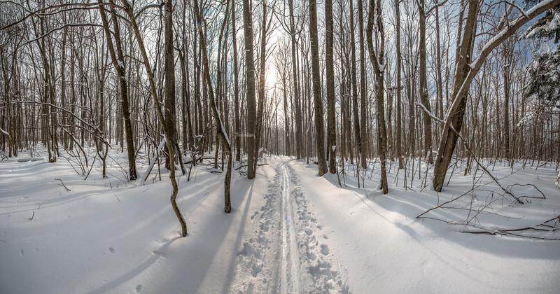 Cross Country Ski Trail Panorama