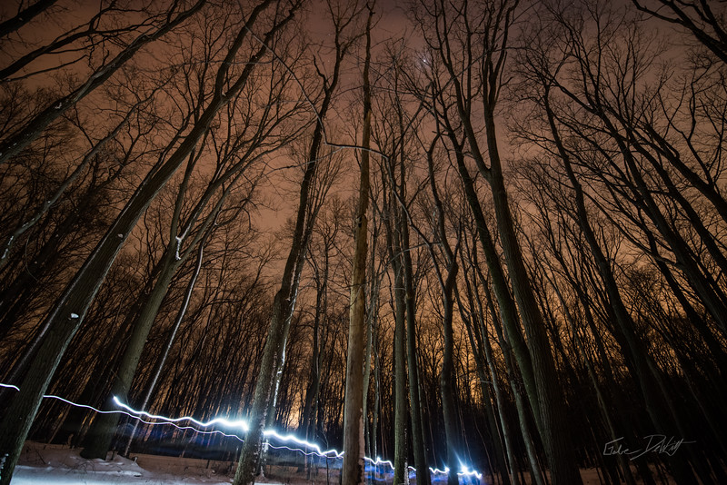 Coopers Rocks_Cross Country Skiing_Light Pilars_Winter_West Virginia_photo by Gabe DeWitt_February 21, 2015-148